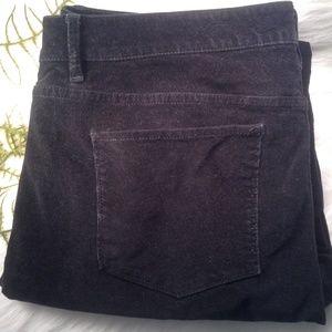 J Jill Black Velvet Pants